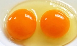 6 thực phẩm giúp bé càng ăn càng thông minh, sáng tạo, nhất là loại thứ 3