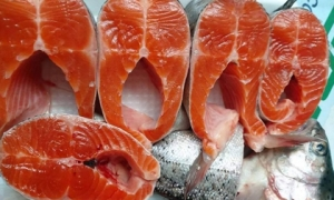 Cá hồi Sa Pa giảm giá sâu, còn 110.000 đồng/kg