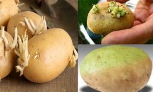 2 thực phẩm mọc mầm tăng gấp đôi dinh dưỡng, loại thứ 3 chớ dại đụng vào kẻo nguy hiểm tính mạng