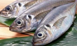 Chuyên gia cảnh báo 5 loại thực phẩm chứa thuỷ ngân, chì, asen... nhiều người Việt vẫn cho con ăn
