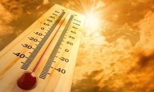 Tập thể dục ngày nắng nóng có thể hại sức khỏe: Chuyên gia nêu 3 điều cần làm để bảo vệ bản thân