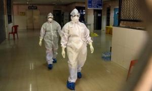 'Rùng rợn' virus từ dơi gây chết người khủng khiếp hơn Covid-19, tiềm năng thành đại dịch: Ấn Độ căng thẳng