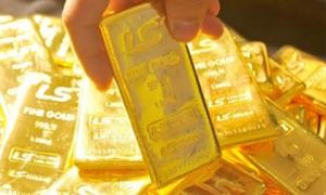 Giá vàng hôm nay 11/10: Dự báo sẽ tăng mạnh trong tuần này