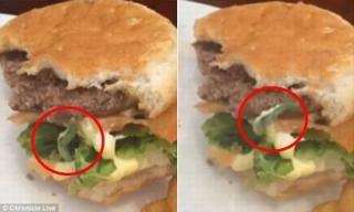Sâu ngọ nguậy trong bánh hamburger khiến thực khách 'rợn người'
