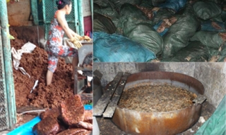 Phát hoảng với quy trình chế biến thực phẩm bẩn