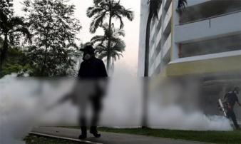Singapore xác nhận 16 phụ nữ mang thai bị nhiễm virus Zika