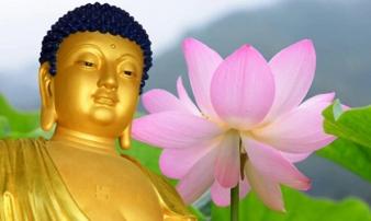 66 lời Phật dạy về cuộc sống ai cũng nên đọc ít nhất 1 lần trong đời