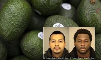 Mỹ: 3 người đàn ông bị bắt vì ăn trộm số bơ trị giá 6,8 tỷ đồng