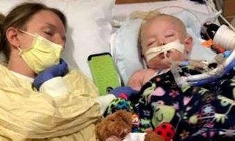 Sau 1 tuần sốt cao, bé 2 tuổi tử vong vì vết đốt trên da bố mẹ tưởng đơn giản
