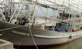 Kỳ diệu: Tàu cá nghi mất tích trong bão trở về, 10 thuyền viên an toàn