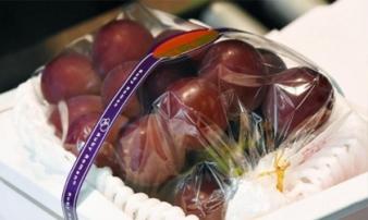 Những loại trái cây Nhật đắt như vàng ròng đổ bộ về Việt Nam