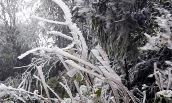 Đêm mai 15/12 miền Bắc có nơi rét buốt 1 độ C, Mẫu Sơn có thể xuất hiện băng giá