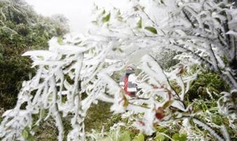 Đón đợt không khí lạnh mạnh nhất từ đầu đông, Hà Nội rét buốt đến khi nào?
