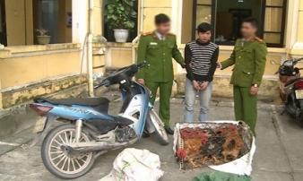 Đối tượng truy nã, gây ra 150 vụ trộm cắp tài sản sa lưới