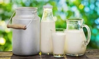 Uống sữa thế nào để không biến thành 'chất độc'?