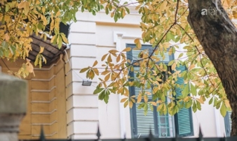 Đây là Hà Nội những ngày lá vàng lá đỏ, đẹp cứ ngỡ mùa thu xứ Hàn
