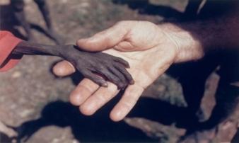 9 bức ảnh lay động trái tim hàng triệu người trên thế giới