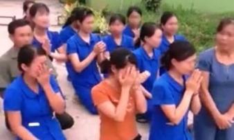 Xôn xao cảnh hàng chục giáo viên mầm non quỳ khóc xin tiếp tục dạy trẻ