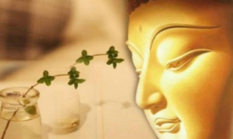 19 điều đức Phật dạy giúp bạn sống hạnh phúc hơn mỗi ngày