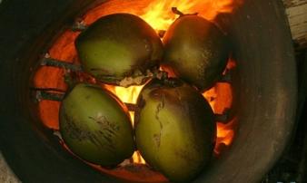 Để quả dừa nướng trên bếp ga, 30 phút sau bạn sẽ có ngay loại thuốc chữa dạ dày thần kỳ