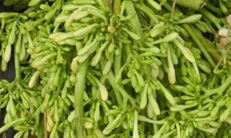 """Các loại rau rừng """"đỉnh nhất', ăn là nghiện của vùng Tây Bắc"""