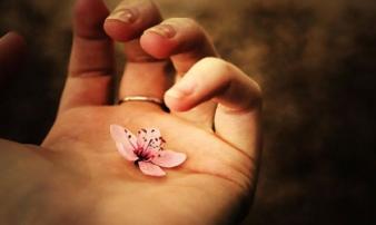 Trên đời vạn sự tùy duyên, còn đây là 7 điều bạn nên khắc cốt ghi tâm để được hưởng phúc