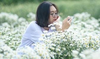 Cúc hoạ mi ở Hà Nội vào mùa: Đâu chỉ giới trẻ, ông bà già cũng kéo nhau đi chụp