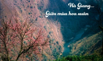 Đến Hà Giang mùa xuân, ngẩn ngơ nhìn đá nở hoa