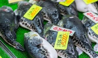Người đàn ông bị hỏng thận hoàn toàn vì ăn loại cá cực độc nhưng không ít người vẫn ăn