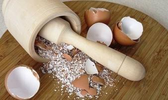 Chữa nhiều bệnh cực tốt từ 'thần dược' vỏ trứng