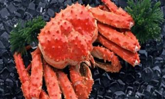 Những loại hải sản có giá đắt 'cắt cổ' nhưng giới nhà giàu không tiếc tiền để mua
