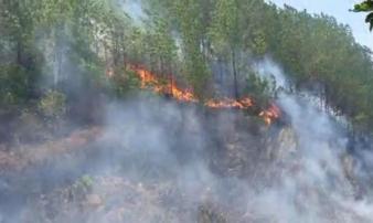 Nắng nóng quay trở lại, rừng ở Hà Tĩnh lại tiếp tục cháy lớn