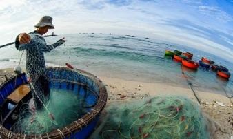 Ngư dân Quảng Ngãi cứu 32 người Trung Quốc trôi dạt trên biển