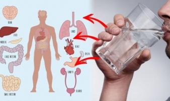 """Uống 1 cốc nước ấm vào đúng giờ này """"quý gấp trăm lần ăn nhân sâm thuốc bổ"""", nhiều người vẫn cho qua"""