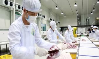 Nguy cơ thiếu thịt lợn nghiêm trọng dịp Tết Nguyên Đán 2020