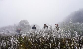 Thời tiết ngày 17/2: Miền Bắc tiếp tục rét đậm, rét hại