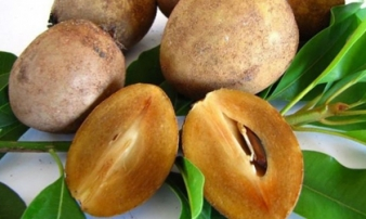 6 loại trái cây 'cực độc' với người bị tiểu đường, thèm mấy cũng chớ dại mà ăn