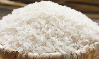 Việt Nam tạm dừng xuất khẩu gạo từ hôm nay