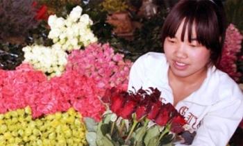 'Cháy' hoa hồng ngày lễ Tình nhân
