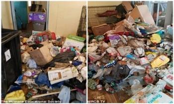 Đột nhập vào căn nhà, cảnh sát bàng hoàng khi nhìn cảnh tượng khủng khiếp bên trong