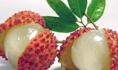 Lưu ý khi cho trẻ ăn quả vải để tránh ngộ độc