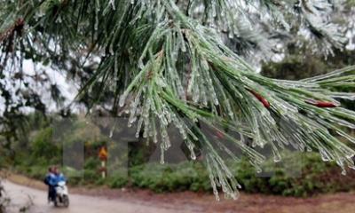 Tin thời tiết ngày 18/11: Bắc Bộ sương mù, duy trì trời rét