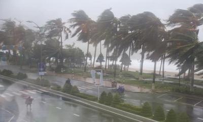 Mùa bão 2019 diễn biến phức tạp, siêu bão có thể xuất hiện trên Biển Đông