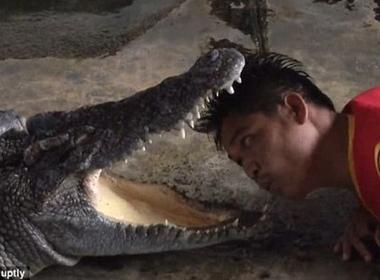 Một diễn viên chui đầu vào miệng cá sấu