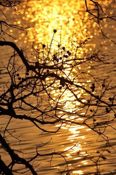 Mê hoặc chiều dát vàng Hồ Gươm - 9