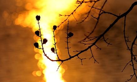 Mê hoặc chiều dát vàng Hồ Gươm - 7