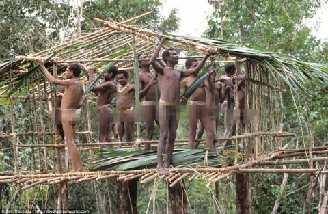 Sức sống phi thường của bộ lạc sống trong những ngôi nhà trên cây cao tới 50m, tách biệt với loài người - Ảnh 2.