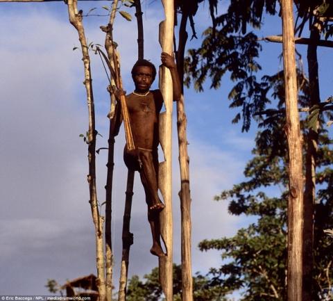 Sức sống phi thường của bộ lạc sống trong những ngôi nhà trên cây cao tới 50m, tách biệt với loài người - Ảnh 5.