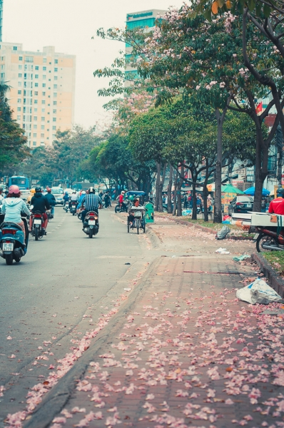 Không ngờ giữa Sài Gòn lại có những con đường hoa đẹp đến thế này! - 10