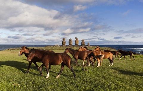 Bí ẩn ngàn năm về sự diệu kỳ của Đảo Phục Sinh Rapa Nui - 11